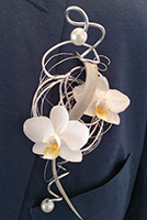 Corsage bruidegom witte Orchidee
